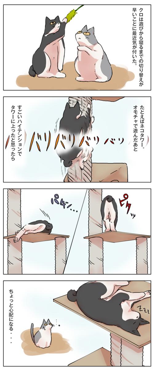 姉妹ねこ日記8